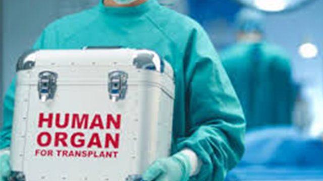 Над 40 човека живеят втори живот след трансплантация